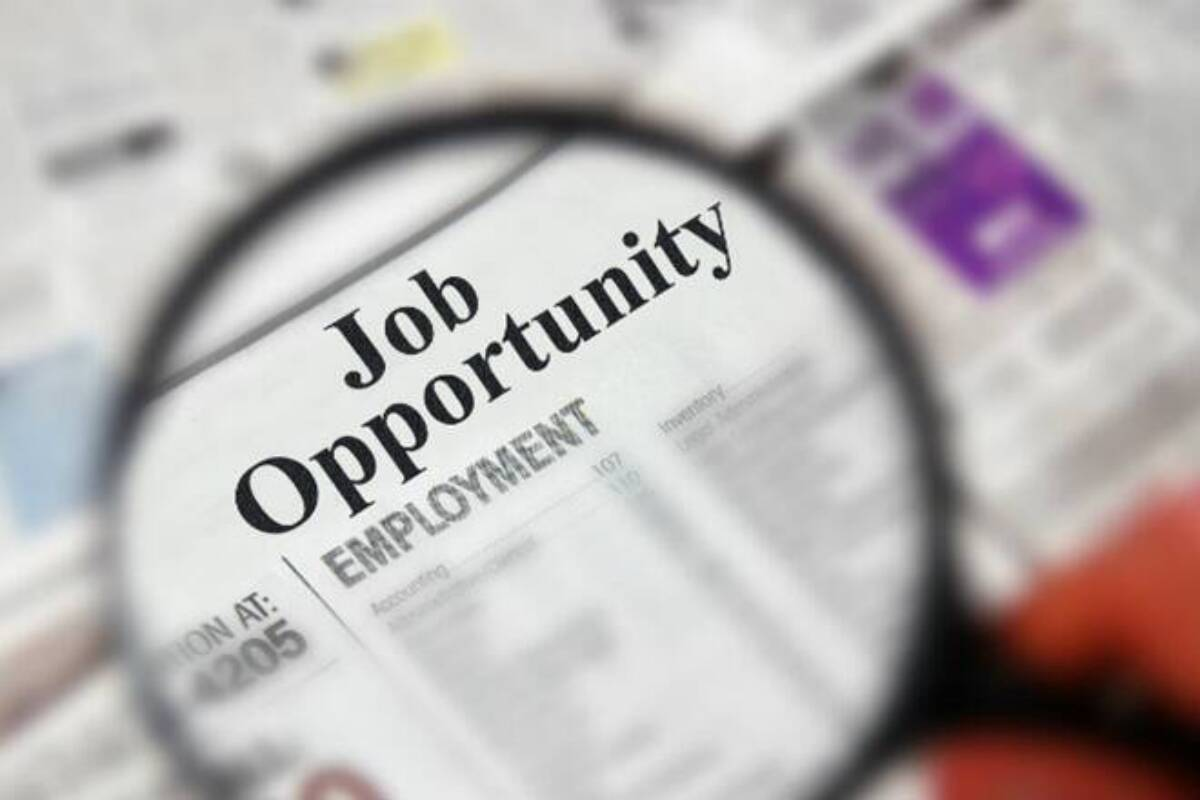 JobSarkari - See How To Find A Job